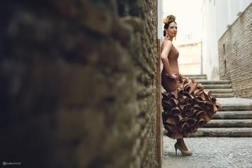 Sesión flamenca.
